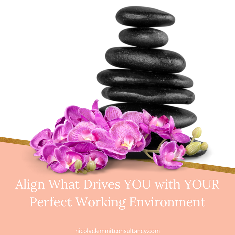 Aligning YOU with YOUR perfect working environment
